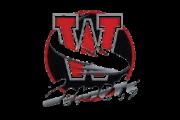 Asset 23wesm logo